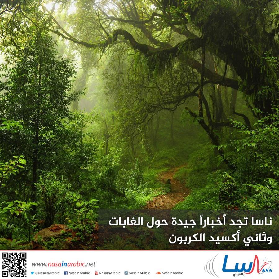 ناسا بالعربي ناسا تجد أخبارا جيدة حول الغابات وثاني أكسيد