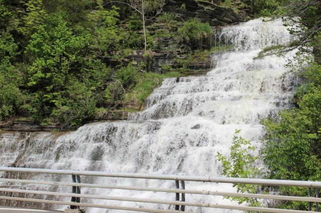 Hector Falls