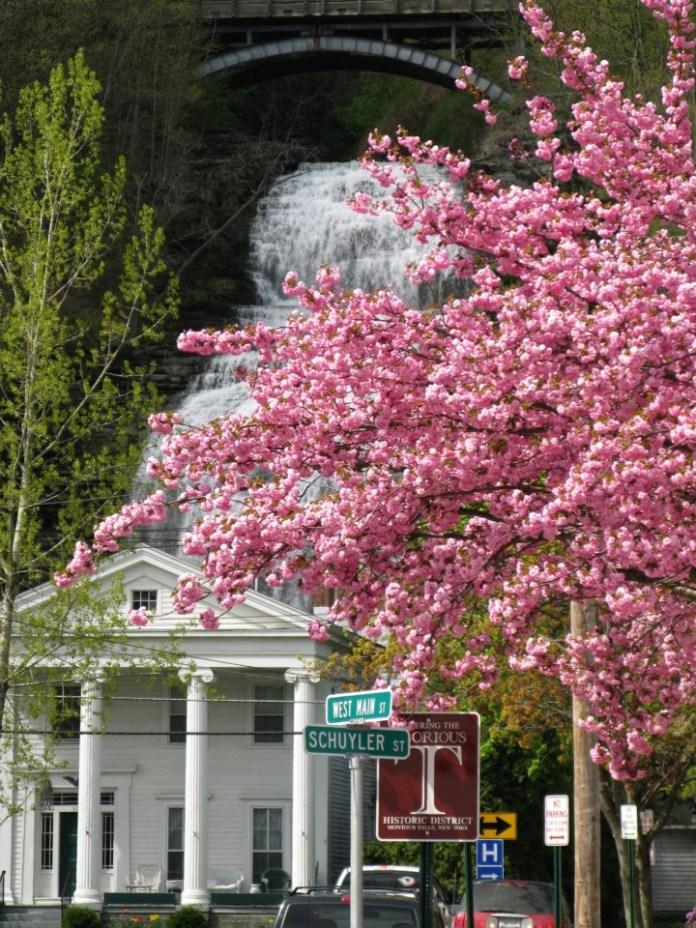 Spring in Montour Falls