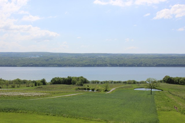 View from Chateau LaFayette
