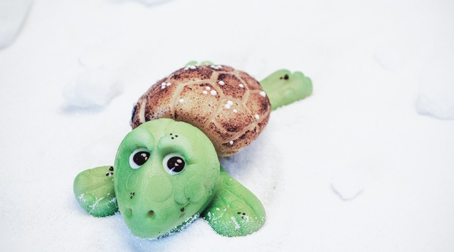 Little green sea turtle – Marzipan Schildkröte