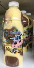 Boermarke Vlappie Pudding in der Plastikflasche