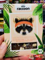 raccoon Erdnuss Meersalz Bio 22% Protein Schokolade mit Kokosblütenzucker