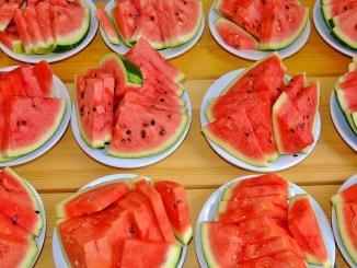 Wassermelonen-Portionen / Bildnachweis: CC0 via pixabay.com