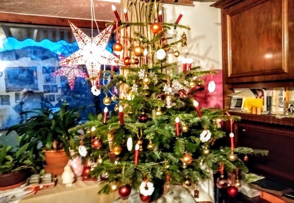 Weihnachtsbaum mit süßem Baumbehang in Österreich 2019 1