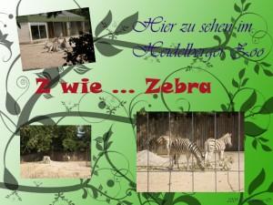 Z wie ... Zebra
