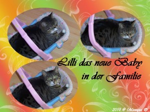 Lilli-das-Baby