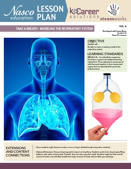 Modeling the Respiratory System Lesson Plan