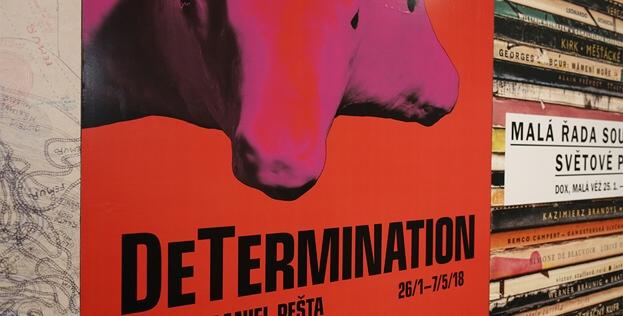 Image result for Daniel Pešta: DeTermination