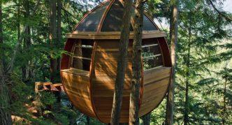 The Tree House Hemloft