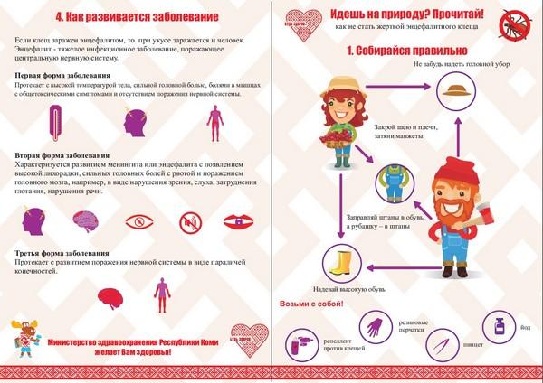 Признаки укуса клеща у человека симптомы. Инкубационный период после укуса клеща у человека