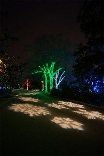 Tree Wrap & Focal Lighting Nashville