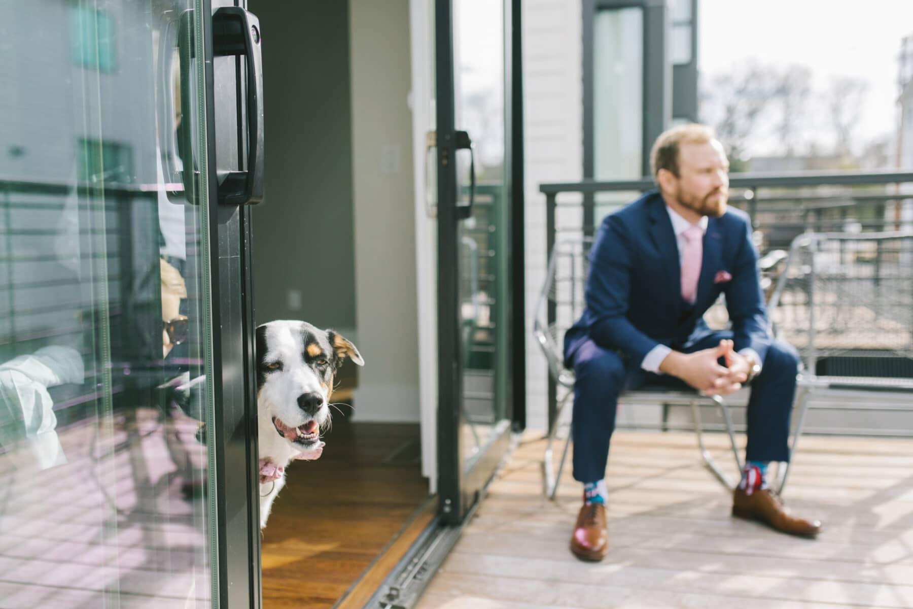 Pet Dog Wedding Party Member   Nashville Bride Guide