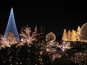 Nashville Christmas Lights - Gaylord Opryland
