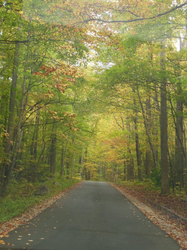 Roaring Forks Driving Trail - on the road 1