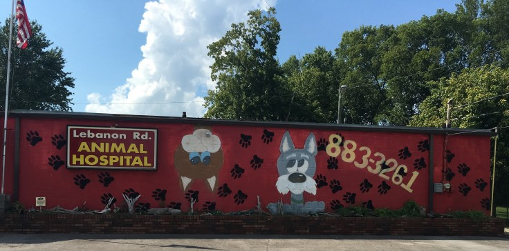 Dog cat mural street art Nashville