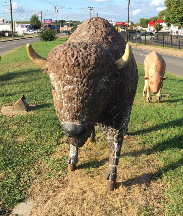 Buffalo statue street art Nashville