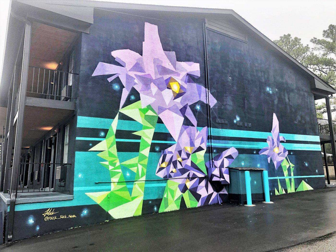 Iris Hotel mural street art Nashville