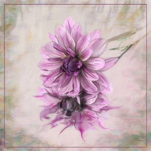 Dahlia Painting by Valerie Interligi