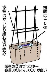 nasu-uetuke (2)