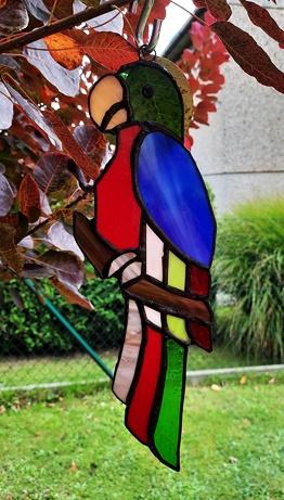 witraż papuga