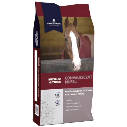 D and H Specialist Nutrition Convalescent Muesli NEW 3D