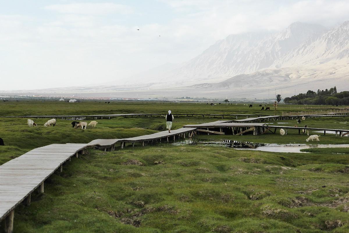 Tashkurgan-Landgrass
