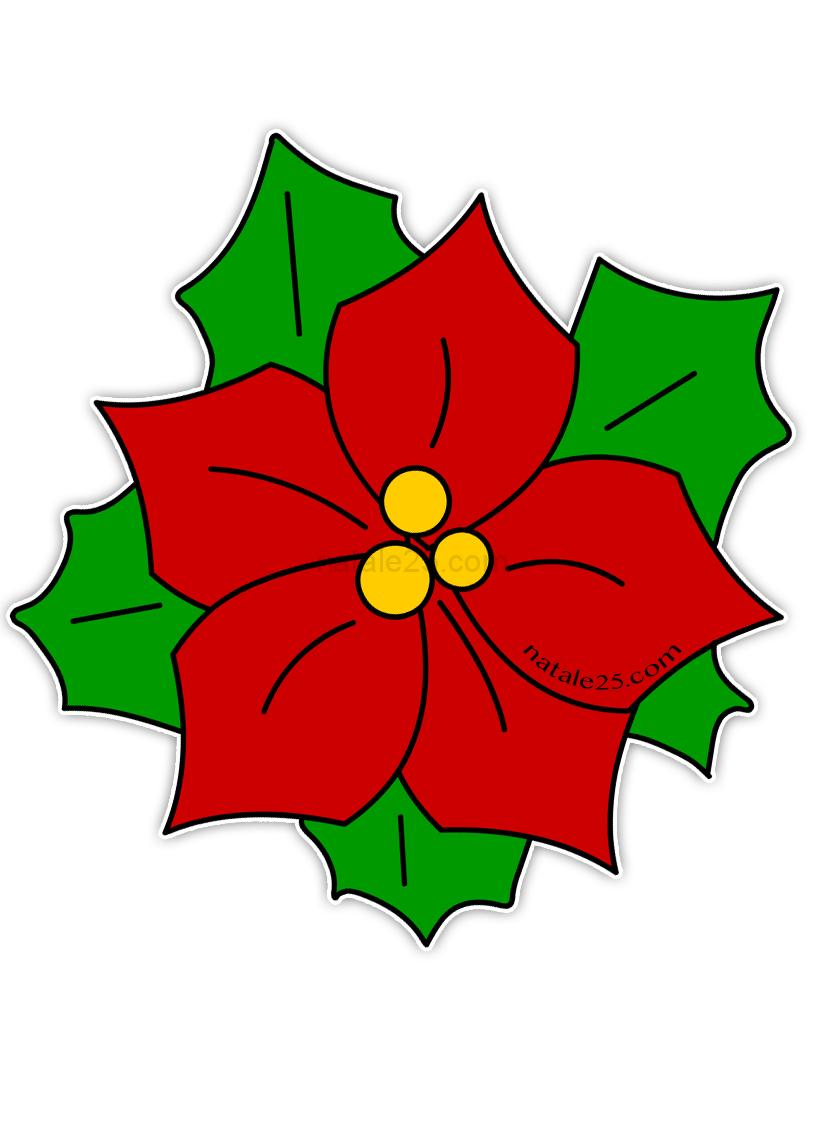 Stella enchantix da stampare e colorare per bambine e tanti altri disegni da colorare e … Stella Di Natale Di Carta Per Addobbi Aula Natale 25