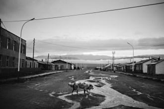 Darvi (Mongolia). | Foto: Walter Astrada