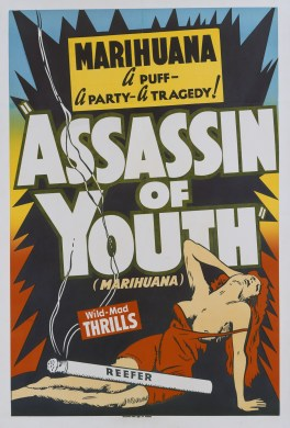 A poster for Elmer Clifton's 1937 drama 'Assassin of Youth' . (Photo by Movie Poster Image Art/Getty Images)