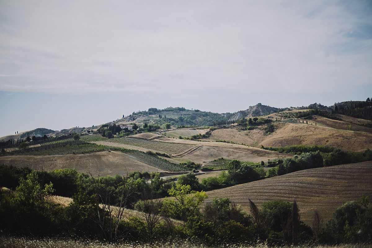 Landscapes around Certaldo, Tuscany