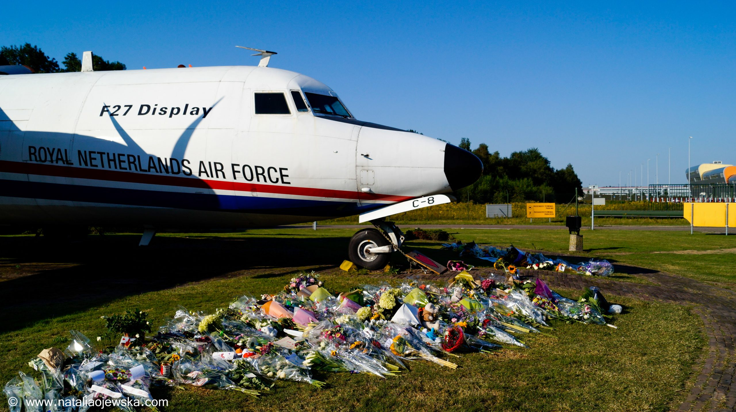 July 23, 2014: Eindhoven, Military Airport. A sea of flowers at a field close to the entrance to the military airport in Eindhoven.