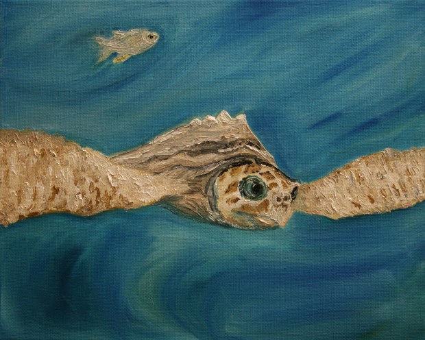for Book 8x10 sea turtle Matthew oil painting by Natalie Buske Thomas