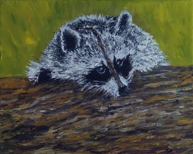 Raccoon oil painting by artist Natalie Buske Thomas
