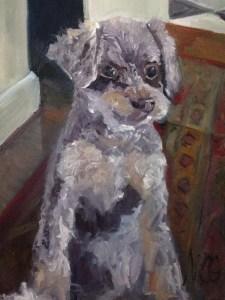 """Original Oil Painting-Pet Portraits: """"Portrait of Toy Poodle"""" oil on canvas, 24"""" x 18"""""""