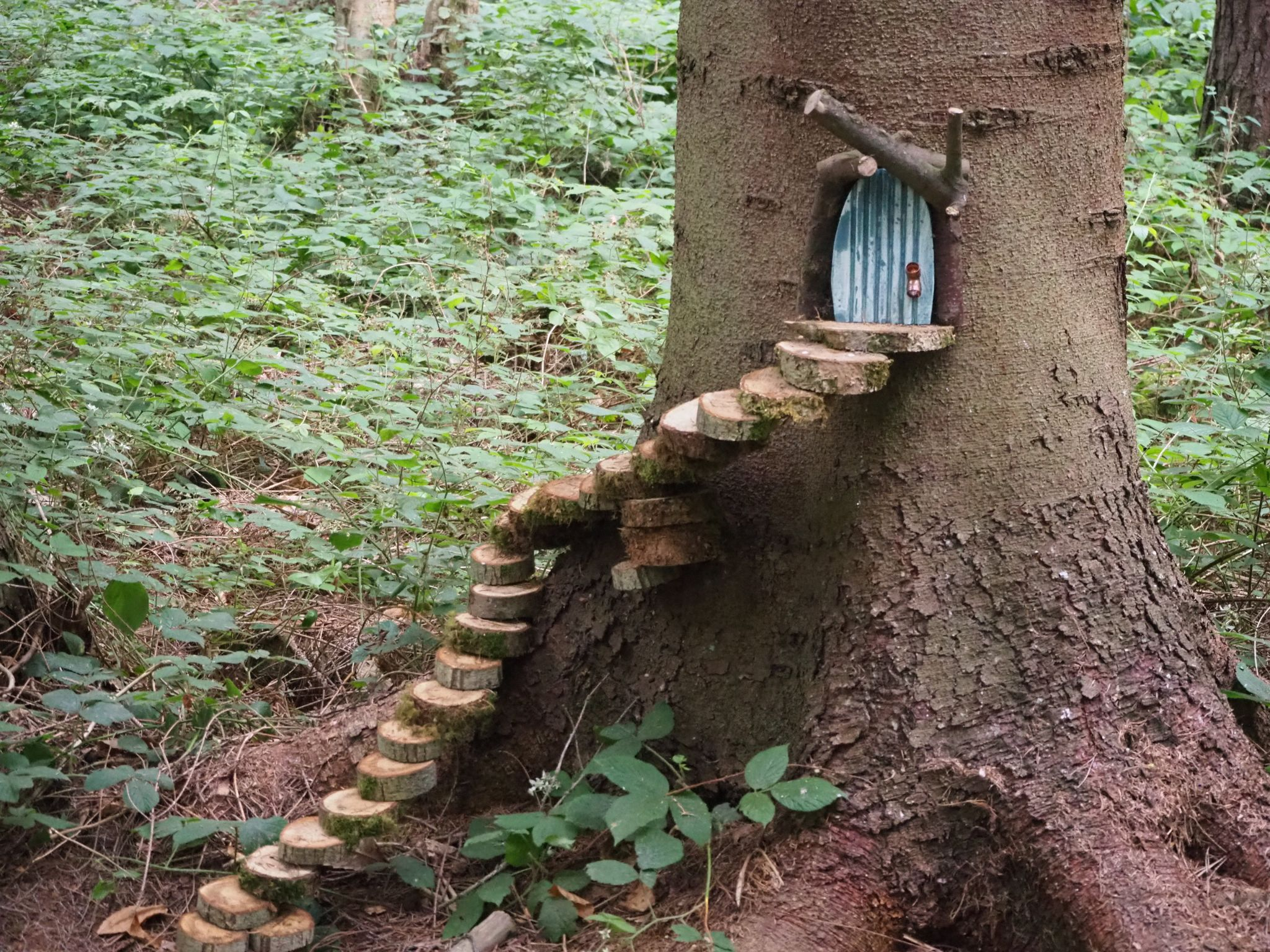 Northwood Fairy House