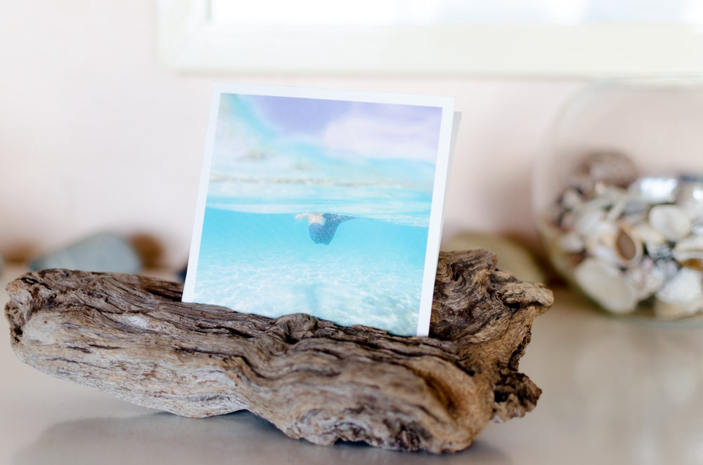 drift wood picture holder