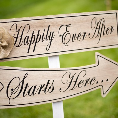 Happily ever after - Michigan Area Wedding Photographer