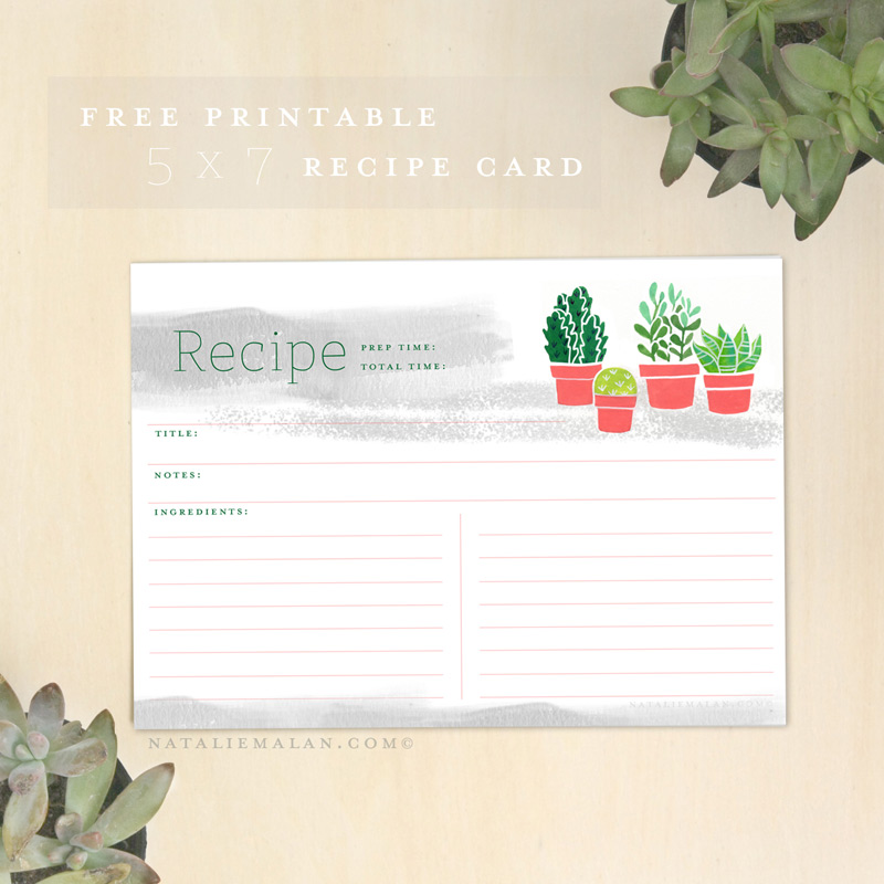 Free Recipe Cards Printable- 5x7 Succulent - Natalie Malan
