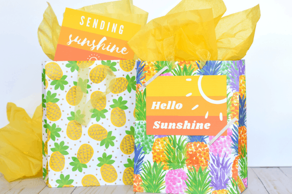 The Ultimate Guide to Creating a Little Bag of Sunshine