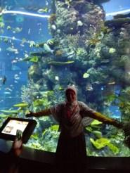 Ada tower akuarium yang besar banget, Mbak Haya langsung minta difoto di depannya :D