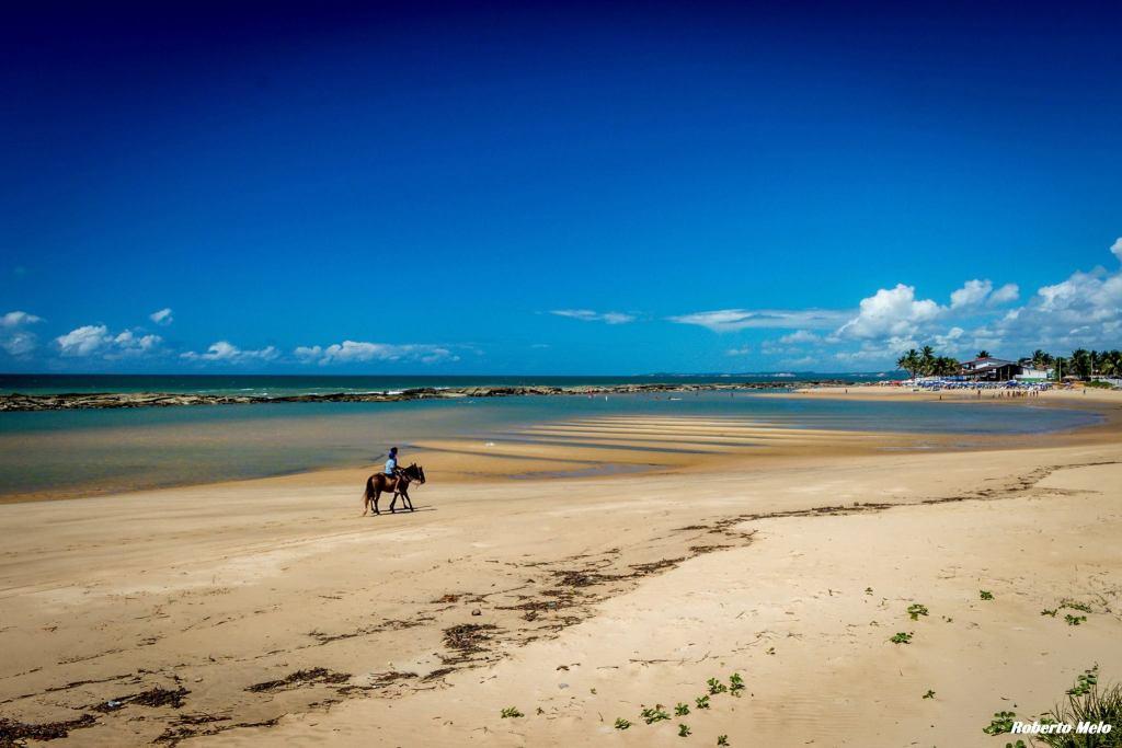 Resultado de imagem para Praia de Camurupim rn