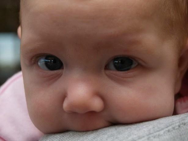 Бебетата са съзнателни