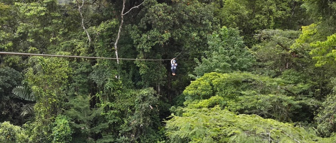 I Survived Zip Lining Through the Rain Forest, Sort Of: How I Came to Create the Best Scar Cure Ever