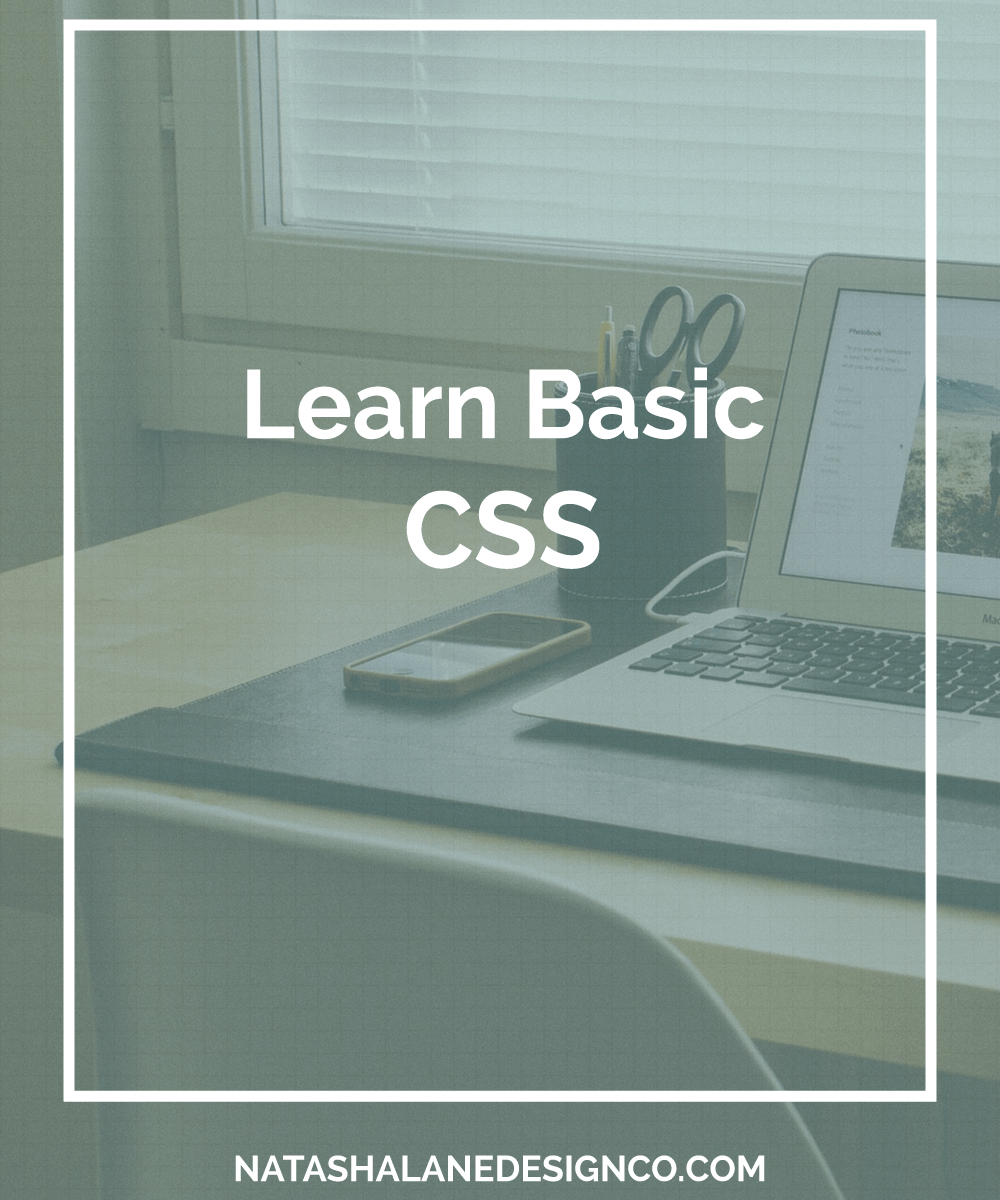 Learn Basic CSS