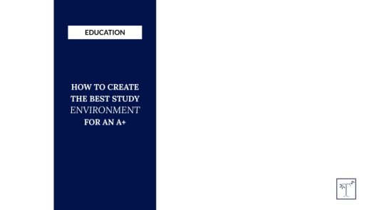 Brand x Web Design for Tutor in Tinseltown Title Graphic
