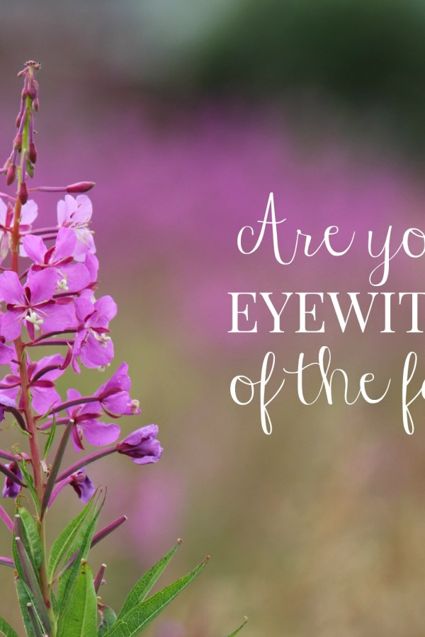 Are you an eyewitness of the faith?
