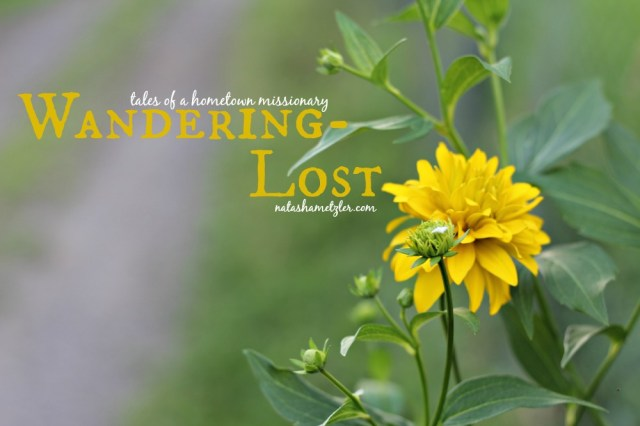 Wandering-Lost {tales of a hometown missionary}