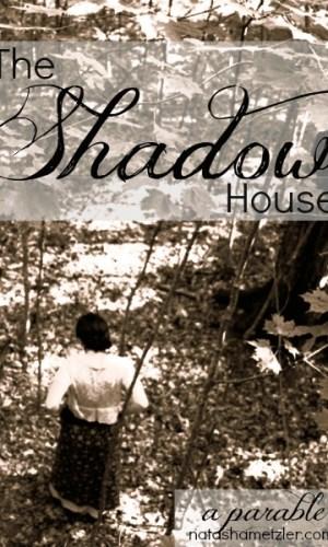 The Shadow House by @natashametzler
