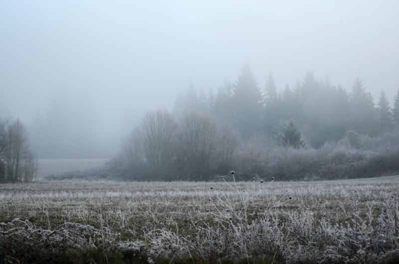 snow-1673524_1920